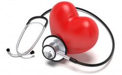 testosterone and cardiovascular health